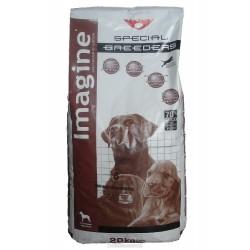 Imagine dog ADULT LARGE 20kg-11936-Z