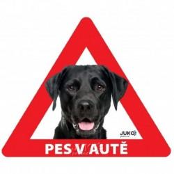 samolepka-Pes v autě-sklo ze vnitř- LABRADOR černý-13615