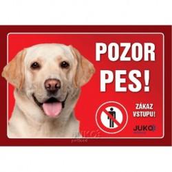 Samolepka - pozor pes labrador zlatý