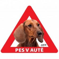 samolepka-Pes v autě venkovní-JEZEVČÍK hladkosrstý hnědý-13893