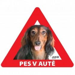 samolepka-Pes v autě venkovní-JEZEVČÍK dlouhosrstý hnědý-13894