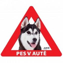 samolepka-Pes v autě venkovní-HUSKY/MALAMUT-13897