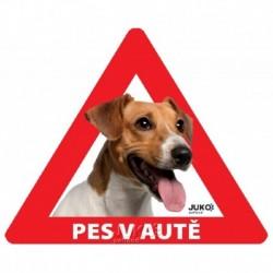 Samolepka pes v autě venkovní- jack russel teriér