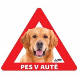 samolepka-Pes v autě venkovní - RETRIEVER-13640