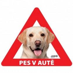 samolepka-Pes v autě venkovní - LABRADOR žlutý-13635