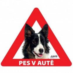 samolepka-Pes v autě venkovní - BORDER KOLIE-13633