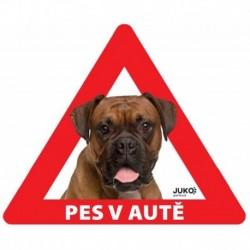 samolepka-Pes v autě venkovní-BOXER-13898
