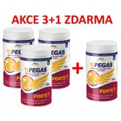 Vitar veterinae ARTIVIT PEGAS FORTE 7- 700g-AKCE 3+1+MAXIVITA -14961
