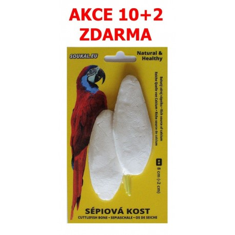 SÉPIOVÁ kost na kartě-cca 8cm-2KS-AKCE 10+2 Zdarma