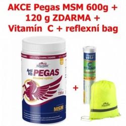 Vitar veterinae ARTIVIT PEGAS MSM 700g+Zdarma Vitamín C+ Kšiltovka-15509