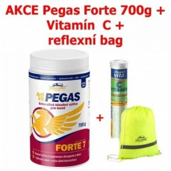 Vitar veterinae Artivit Pegas Forte, kůň 700 g DÁREK
